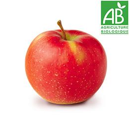 Pomme Jonagored BIO Nature de Pommes