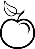 Croquis Nature de Pommes